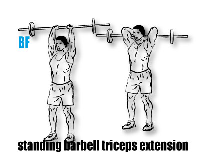 Standing Barbell Triceps Extension