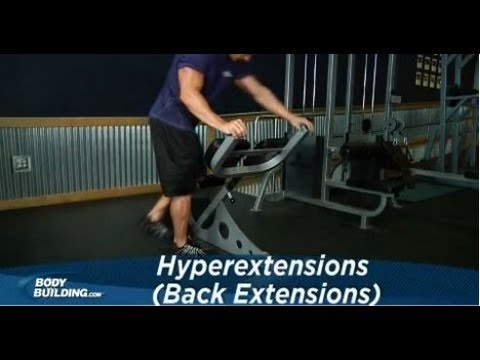 Hyperextensions Back Extension Exercise